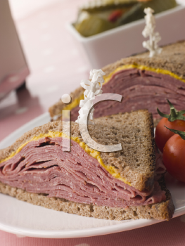 Royalty Free Photo of Pastrami on Rye