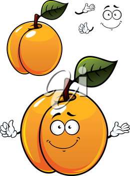 Fun colorful cartoon apricot fruit character with a green leaf, happy smile and waving hands isolated on white background