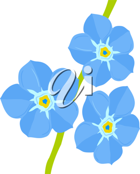 Royalty Free Photo of Forget-Me-Nots