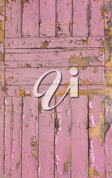 The Pink Grunge Wood Texture. Surface Of Old Wooded Door Paint Over.