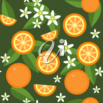 Vector. Seamless orange fruit and flowers texture 545