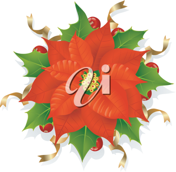 Royalty Free Clipart Image of a Poinsettia
