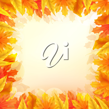 Autumn leaves background, vector